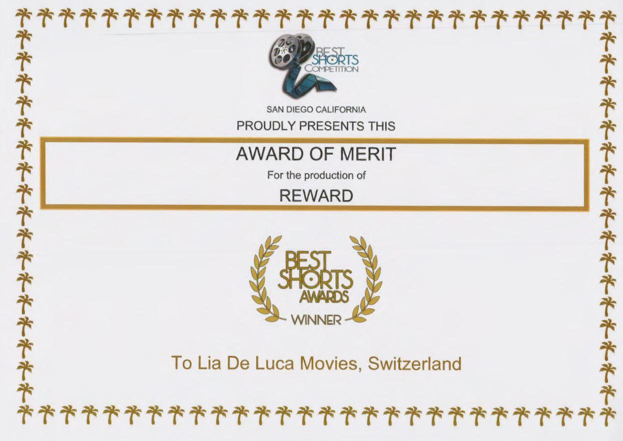 image-235039-Award of Merit_03.JPG